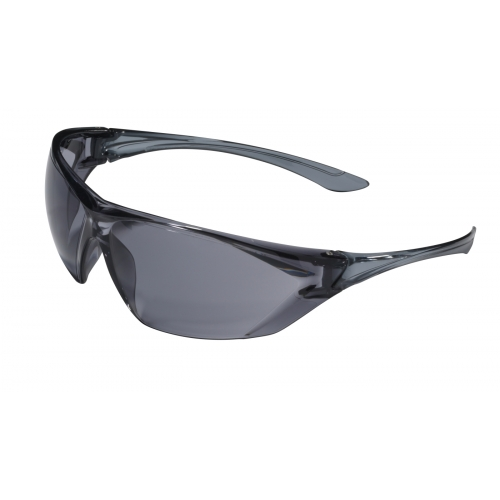 Schutzbrille SPEED Scheibe rauchgrau