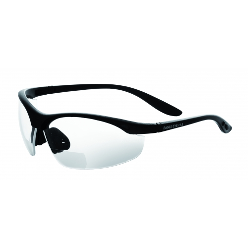 Schutzbrille Eagle Eye/ Anti Fog- UV 400/KLAR/+2,5